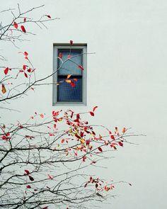 Far from home - Pinned by Mak Khalaf Abstract fallskywindow by SaeedBidzardi