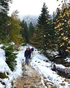 #ispyapi #Krakow students exploring the snowy cozy village of #Zakopane  Zakopane is right in the #Tatra mountains; the highest mountain range in the #carpathians #repost from current #apiabroad #krakow student @sabina_lyszczarczyk