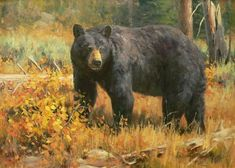 Collection of archived paintings by Brian Grimm held in private and public collections. Bear Art, Country Art, Big Game, Black Bear, Grimm, Giclee Print, Bears, Wildlife, Paintings