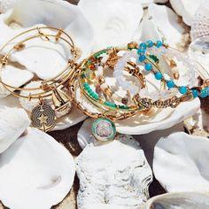 The #sea is a place of endless exploration. # #⛵️ #⚓️ #exploredeepsea #shells #bangles#silver#gold#anchor #sailboat#seahorse #ALEXANDANI