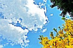 Ein Blick auf den Himmel