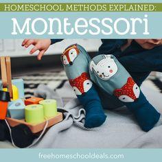 Homeschool Methods Explained: Montessori Montessori Homeschool, Homeschooling, Types Of Education, Reading Comprehension Activities, Literacy Programs, Middle School Teachers, Kindergarten Worksheets, Hands On Activities, Kids Learning
