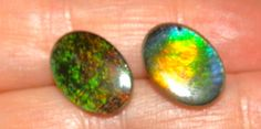 Gorgeous genuine Alberta Ammolite earrings. A must for any precious gem collector. by FelinePurrtyDesigns on Etsy