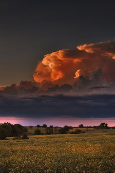 "Thunderhead- a cumulonimbus cloud during a thunderstorm.  ""Except far to the northwest, where the remains of a thunderhead lingered, the sky was bright with stars"" (Hillerman 4)."