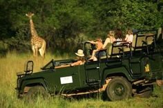 Jembisa, The Waterberg, Limpopo, South Africa - Enjoy a Game drive with your wedding guests before the Big day