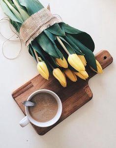 Tulips flat lay | тюльпаны флэтлэй