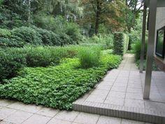 buro mien ruys - tuin & landschapsarchitekten - Tuin in Dalfsen