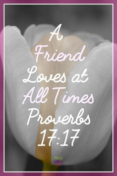 Do you have awesome friends who have been with you through the good and bad times? Let them know today how thankful you are for them! A great reminder to be thankful for friendship. 7 Reasons Why I Am Thankful You Are My Friend Goodbye Quotes For Friends, Friend Quotes, Famous Friendship Quotes, You Are My Friend, Memory Verse, Perfection Quotes, Magic Words, Friends In Love, Amazing Friends