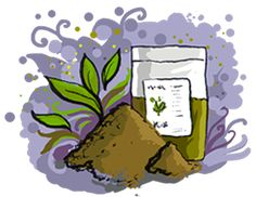 Dossier Aroma-zone Henné et poudres végétales colorantes pour les cheveux.