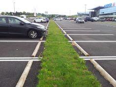 Noue drainante ECOVEGETAL #parkingpermeable