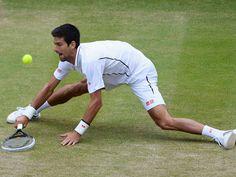 Novak Djokovic was at full stretch but still managed a comfortable quarter final victory against Tomas Berdych. Wimbledon 2013, Wimbledon Tennis, Tennis News, Lawn Tennis, Tennis Championships, Andy Murray, British Men, Victorious, Memories