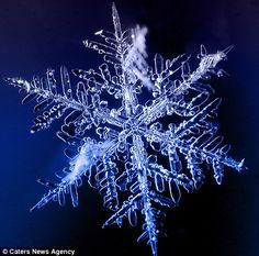 Timofey Cherepanov spends hours taking these incredible macro photographs of snowflakes