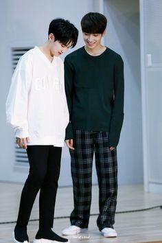 Hoshi and Wonwoo//Seventeen Woozi, Mingyu Wonwoo, Seungkwan, Kpop, Carat Seventeen, Hip Hop, Seventeen Wonwoo, Seventeen Wallpapers, Meanie