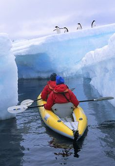 Kayaking with Penguins in Antarctica
