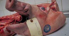 Begini Al-Qur'an Menjelaskan Haramnya Memakan Daging Babi