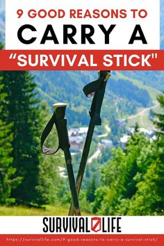 Arm yourself with a survival stick, get savvy with it, but first, find out why as you read on! #survivallife #survival #preparedness #survivalist #prepper #camping #outdoors #spring #outdoorsurvival #survivalstick #survivalgear #survivaltool Outdoor Survival Gear, Survival Hacks, Survival Life, Survival Tools, Survival Prepping, Camping Style, Camping Outdoors, Outdoor Camping, Best Fishing Rods
