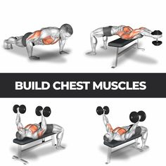 Install & start train now for fast visible results ? Fitness Workouts, Abs And Cardio Workout, Gym Workouts For Men, Gym Workout Chart, Gym Workout Videos, Weight Training Workouts, Gym Workout For Beginners, Dumbbell Workout, Yoga Fitness