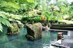 The Royal Pita Maha: The Healing Pond.