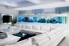 Morskie akwarium w salonie