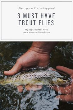 My top 3 flies for finicky winter trout. Its a good read and not lengthy at all. - My top 3 flies for finicky winter trout. Its a good read and not lengthy at all. Come by and check - Fly Fishing Nymphs, Sea Fishing, Saltwater Fishing, Kayak Fishing, Women Fishing, Carp Fishing, Fishing Tackle, Walleye Fishing Tips, Bass Fishing Tips