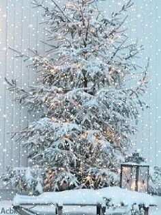 ❄️ WINTER SNOW GIF ❄️ – diy snow trendy stylish winter clothes for warming minute crochet snowflake free pattern Christmas Tree Gif, Christmas Scenes, Snowy Pictures, Christmas Pictures, Winter Snow Wallpaper, Snow Night, Winter Night, Snow Gif, Winter Wonderland