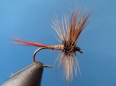 BBQ Dry Fly http://onthevise.com/flies/bbq-dry-fly-1016  Pattern Body	Stripped Quill Hook Size	12 Hook Type	Dry Tail	Furnace Hackle Wing	Turkey Flat