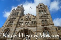 Natural History Museum | A mum in London