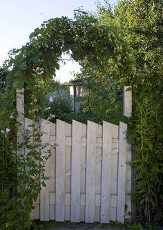 Puutarhan portti kutsuu kylään | Meillä kotona
