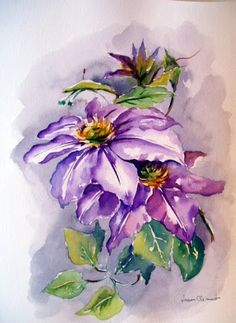 LAURA CLIMENT : Clematis, watercolor