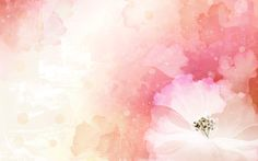 Flower Backgrounds | vector flower background web wallpaper images wallpapers website ...