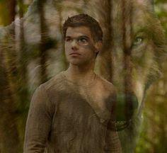 Twilight Wolf Pack, Jacob Black Twilight, Die Twilight Saga, Twilight Breaking Dawn, Twilight Cast, Twilight New Moon, Twilight Series, Twilight Movie, Twilight Renesmee
