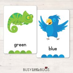 Our Colour Animal Flash Cards are a great learning tool for your children to learn all their colours! All cards are designed with bright coloured pictures.  There are 12 cards in this set.  ♥ ♥ ♥ HOW TO ASSEMBLE ♥ ♥ ♥  1. Print out these pages, use thicker card stock for added strength.. 2. Cut out each card and laminate.  ♥ ♥ ♥ HOW TO USE ♥ ♥ ♥  You can use these cards as simple flashcards or you can even print twice and use as a memory game, placing the cards face down on a hard surface…