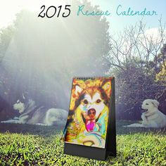 I'm So Blessed .. Calendars, Events, Balls, Trivia Night, Fostering and more   Caroline Cordier is CordierVoodoo