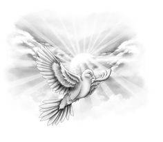 Dove Tattoo Design Picture 2