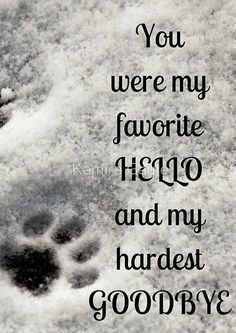 You Were My Favorite Hello And My Hardest Goodbye Spiral Notebook By Kamira Gayle In 2021 Dog Quotes Dog Poems Animal Quotes