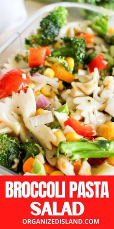 Fresh vegetables, bowtie pasta and a light dressing make this Broccoli Pasta Salad a favorite all summer long!