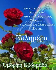 Beautiful Pink Roses, Greek Quotes, Easter
