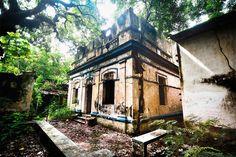 Galeria de Casarões antigos do Recife estão sendo engolidos pelo tempo - 1