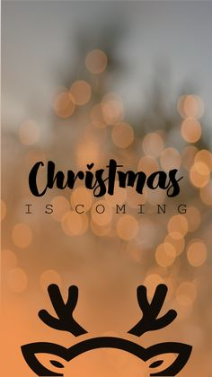 Merry Christmas - Miss Laura Merry Christmas Wallpaper, Holiday Wallpaper, Winter Wallpaper, Disney Wallpaper, Christmas Walpaper, Merry Christmas Background, Christmas Feeling, Christmas Is Coming, Iphone Background Wallpaper