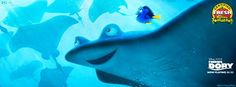 Finding Dory's photo.