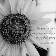 JOY will come in the morning: The pain you've been feeling can't compare to the joy that's coming. Romans 8:18
