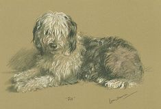 I Am Here, And There... — art-and-things-of-beauty: Dogs by Lucy 'Mac'...