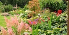 Breathtaking Perennial Beds   FG Garden Photo of the Day