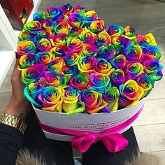 The million roses Rainbow Flowers, Rainbow Colors, Rainbow Stuff, The Million Roses, Billion Roses, Pink Boutique Uk, Rainbow Images, Beautiful Rose Flowers, Luxury Flowers