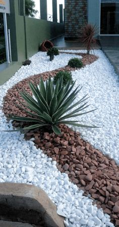 Small Front Yard Landscaping, Tropical Landscaping, Landscaping With Rocks, Modern Landscaping, Outdoor Landscaping, Landscaping Ideas, Michigan Landscaping, Landscaping Edging, Commercial Landscaping