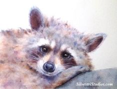 My raccoon watercolor is available as a cute art print and greeting cards.  Woodland animal prints are perfect for wildlife art lovers, in addition to nursery decor and wall art!  To view more animal art by Teresa Silvestri, visit www.SilvestriStudios.com