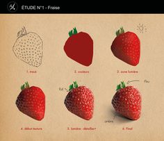 Study - strawberry by Romane Besly on ArtStation. Digital Painting Tutorials, Digital Art Tutorial, Art Tutorials, Eye Drawing Tutorials, Digital Paintings, Sketches Tutorial, Food Painting, Photoshop, Color Pencil Art
