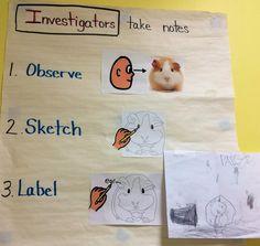 Investigators take notes...