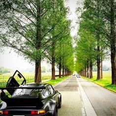 #趣#OMOMUKI  #omomuki911 #porsche#911#930#カーボン#Porsche911#PORSCHE #ポルシェ #porsche carrer #Sesto Elemento #carbon body #日本#japan #メタセコイア  #ガルウイン #porsche930  #911porsche #晴れ #spring  #ポルシェ カレラ #春 by 911omomuki