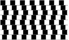 Psychologie en gezichtsbedrog - Hobby.blogo.nl
